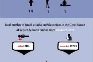 Total Number of Casualties on 31 May 2019