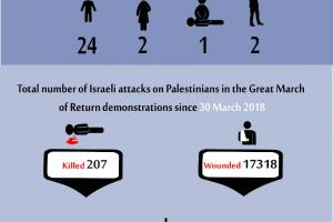 Total Number of Casualties on Gaza Demonstrations, 12 July 2019