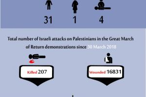 Total Number of Casualties on Gaza Demonstrations, 14 June 2019